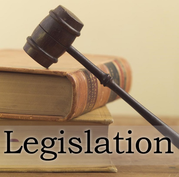 https://www.onescdvoice.com/wp-content/uploads/2018/08/Legislation.jpg